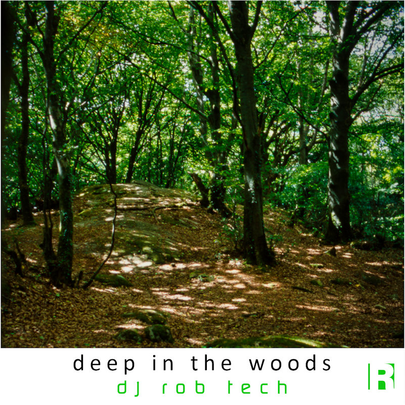 Deep in the Woods cover
